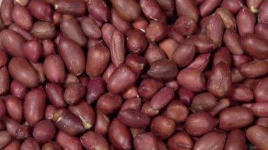 Peeled Peanuts Kernels. — Vídeo de stock