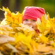 Little girl playing with autumn leaves — Stock Photo #53338331