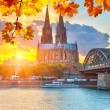 Cologne at sunset — Stock Photo #53840581