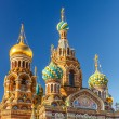 Church of the Savior on Spilled Blood — Stock Photo #53898719