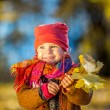 Little girl playing with autumn leaves — Stock Photo #54932841