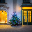 Christmas tree in Vienna — Stock Photo #57719539