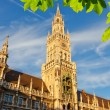 Munchen new town hall — Stock Photo #68211101
