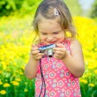 Little girl taking pictures on a meadow — Stock Photo #70104539