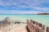 Tropical sea and Playa del Norte beach in Isla Mujeres — Stock fotografie