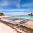 Tropical sea and beach in Isla Mujeres, Mexico — Stock Photo