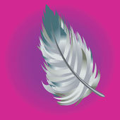 Abstract artistic feather — Stock Photo