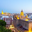 Seville Cathedral and cityscape — Stock Photo #51965441