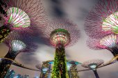Gardens by the Bay — Stock Photo