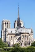 Kathedrale Notre-Dame in paris — Stockfoto