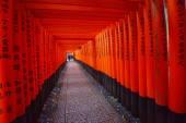 Japanese temple path — Stock Photo