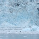Tidewater glacier — Photo #80502582