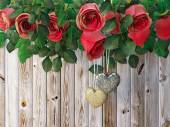 Roses and a hearts on wooden board, Valentines Day background, wedding day holiday background — Stockfoto
