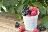 Bucket of blackberry and raspberry — Stock Photo