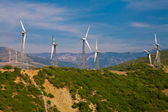 Electrical windmills in Southern Spain — Stock Photo
