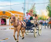 Man working as a coachman at fair — Stock Photo