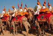 Colorful caravan of camel riders from Rajasthan — Stock Photo