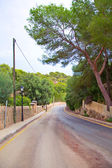 Steep country road leading to the sea. — Stock Photo