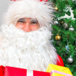 Santa Claus with gifts near the Christmas tree. — Stock Photo #59713837