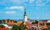 Eski şehrin görünümünü yaz. Estonya, Tallinn. — Stok fotoğraf