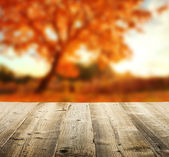 Autumn background with wooden planks — Stock Photo