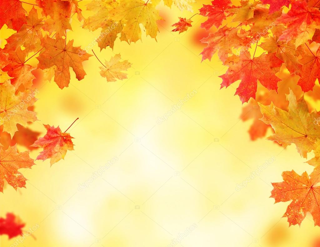 Фон осенние листья картинки