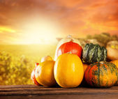 Autumn colored pumpkins on wooden table — Stock Photo