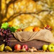Autumn agriculture products on wood — Stock Photo #53454497