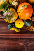 Autumn pumpkins on wooden planks — Stock Photo