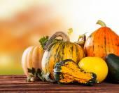 Autumn pumpkins on wood — Stock Photo