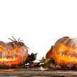 Halloween pumpkins isolated on white background — Stock Photo #54248193