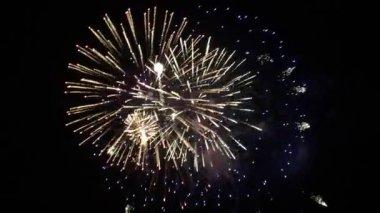 Firework — Stock Video
