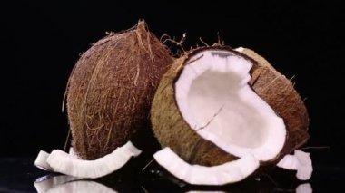 Fresh coconuts — Stock Video