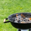 Empty grill with fire on garden — Stock Photo #73089925