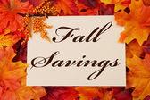 Fall Savings — Stock Photo