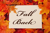 Fall Back — Stock Photo