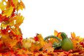 Colorful Fall Border — Stock Photo
