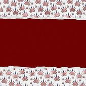 Marijuana Leaves Torn Background — Stock Photo