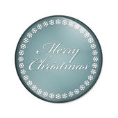 Merry Christmas Button — Stock Photo