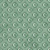 Pale Green and White Star and Crescent Symbol Tile Pattern Repea — Stock Photo