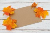 Blank Card for your fall message — Stock Photo