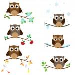 búhos en las ramas — Vector de stock  #77391492