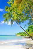 Maldivas — Foto de Stock