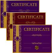 Zarif şablonu bir sertifika, diploma — Stok Vektör