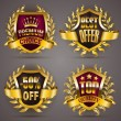 Set of luxury golden badges — Stock Vector #69104251