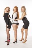 Three slender girls on white background — Foto Stock