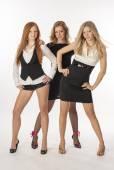 Chica sexy hermosa tres en fondo blanco — Foto de Stock