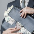 Businessman with a briefcase full of money in the hands of — Stock Photo #62222777