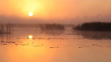 Sunrise on the lake. — Stock Video