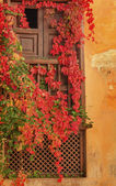 Alhambra Wall Window Fall Leaves Garden Granada Andalusia Spain — Stock Photo